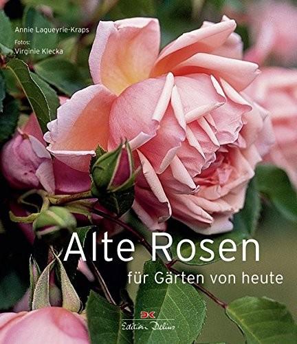 Alte Rosen für Gärten von heute (%)