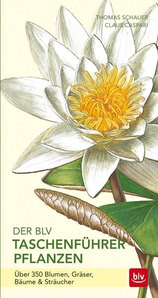 """Buch """"Taschenführer Pflanzen"""""""