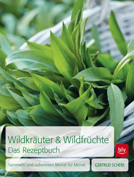 """Buch """"Wildkräuter & Wildfrüchte - Das Rezeptbuch"""""""