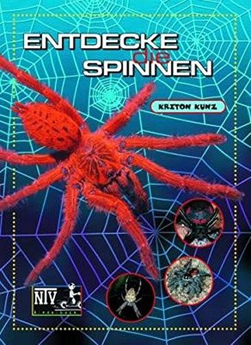 Entdecke die Spinnen (%)