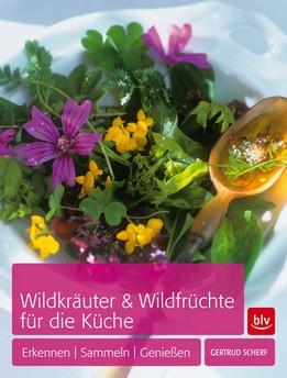 """Buch """"Wildkräuter & Wildfrüchte für die Küche"""""""