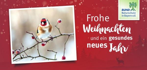 """Klappkarte """"Frohe Weihnachten"""""""