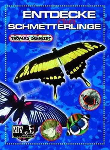Entdecke die Schmetterlinge (%)