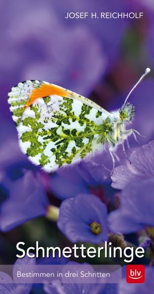 """Buch """"Schmetterlinge"""""""