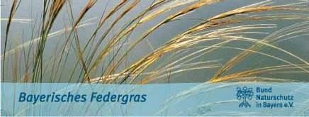 """Lesezeichen """"Bayerisches Federgras"""""""