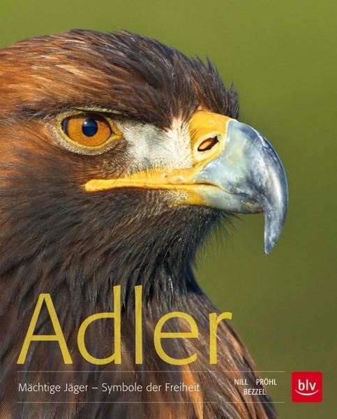 Adler - Mächtige Jäger - Symbole der Freiheit