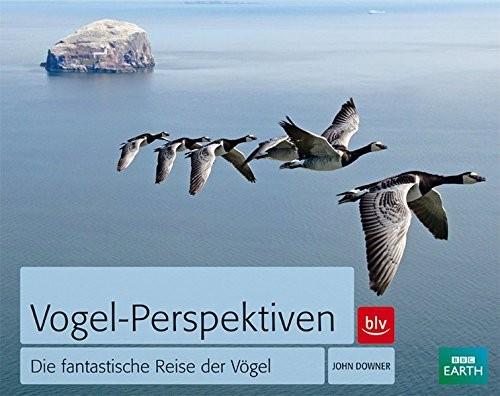 Vogel-Perspektiven - Die fantastische Reise der